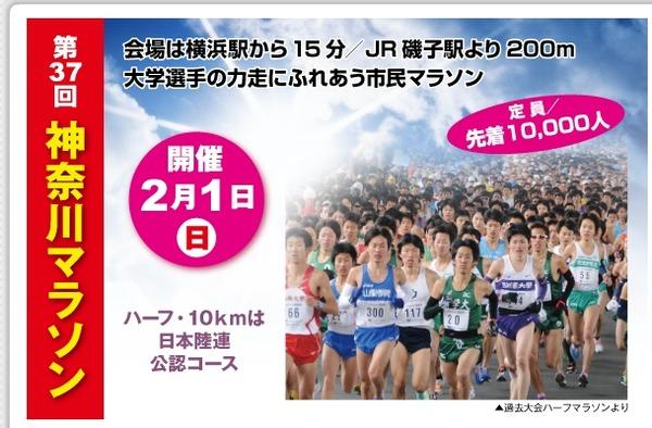 神奈川マラソン 順位