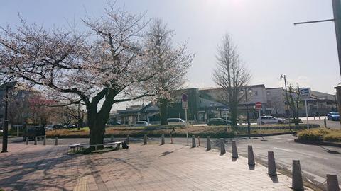 20200321_北本駅1