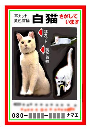 tennsaku_poster