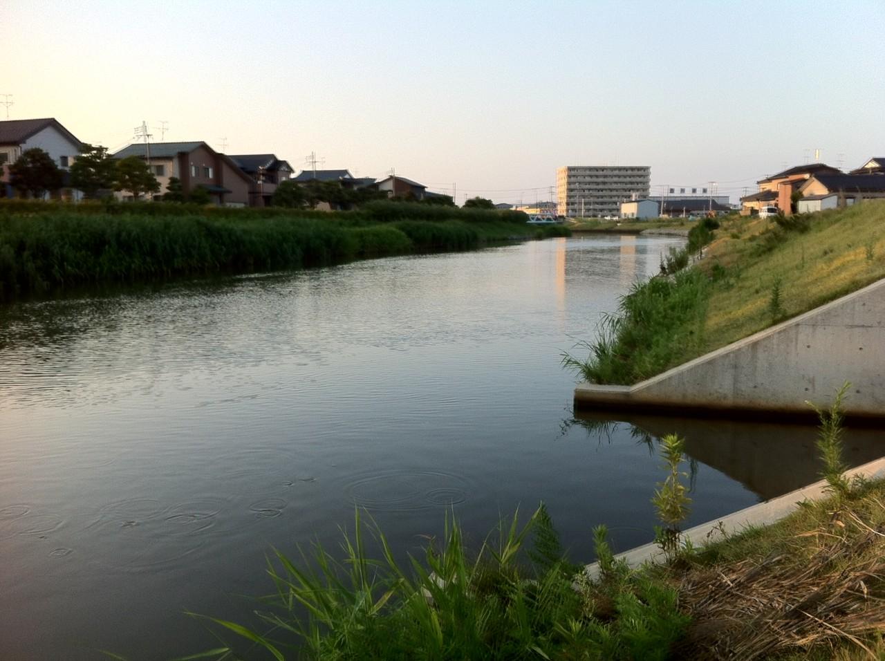 えびみそ釣行記 : 【バス釣り】...