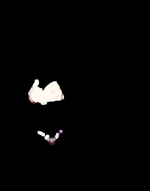 xNMrPOz