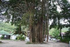Seychelles24