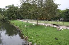 Maastricht18