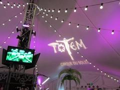 TOTEM09