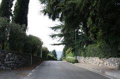 091207 Marchesi01