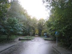 Veen004