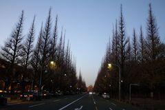 091220 Tokyo01