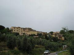 080627 Ornellaia01
