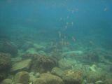 070921 Grotta Byron8