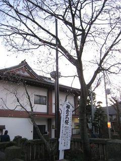 090114 honmonji09