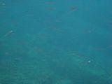 070921 Grotta Byron11