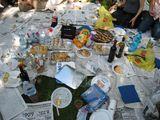 070618 picnic4