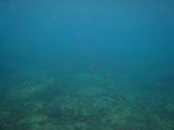 070921 Grotta Byron19