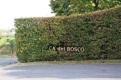 091214 Cadelbosco70
