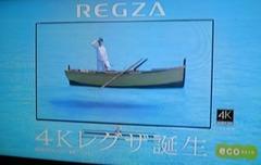 Regza01