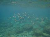 070921 Grotta Byron14