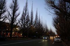 091220 Tokyo02