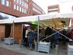 Haarlem33