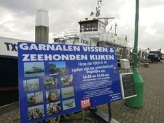 Texel016