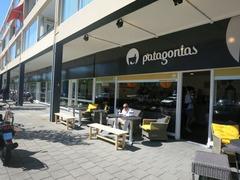 Patagonias01