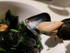 mussel06