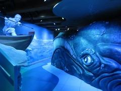 SeaMuseum53