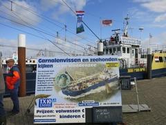 Texel031