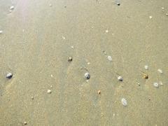 Zandvoort16
