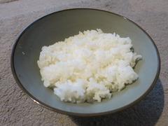 Rice04