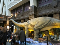 Dinosaurs33
