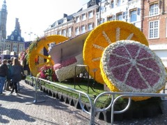 Haarlem13
