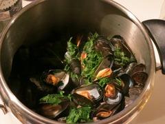 mussel07