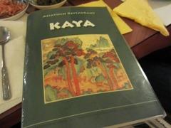KAYA03