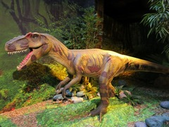 Dinosaurs22