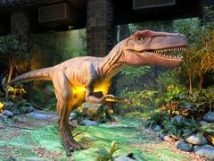 Dinosaurs05