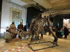 Dinosaurs24