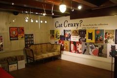 KattenKabinet22