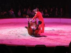 Circus09
