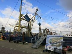 Texel018