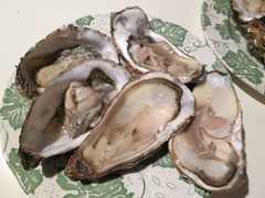 Oyster08