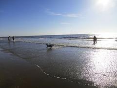 Zandvoort17