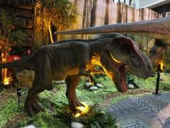 Dinosaurs16