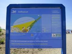 dolfinarium45