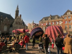 Haarlem07
