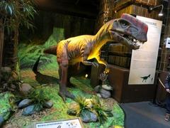 Dinosaurs21