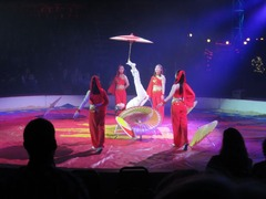 Circus08