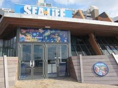 Sealife08