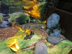 Dinosaurs02