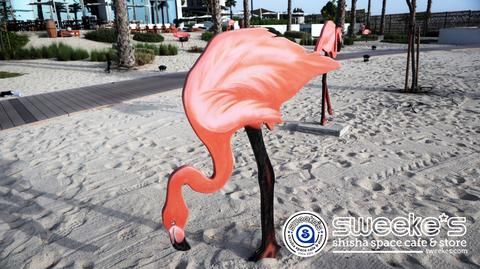 dubai_beach-3