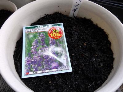 種蒔き4 2012-05-18 9-57-30